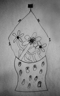 Auricula sketch - anon.