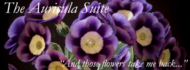 facebook-header-with-full-text-auricula